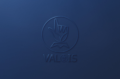 Groupe Valois