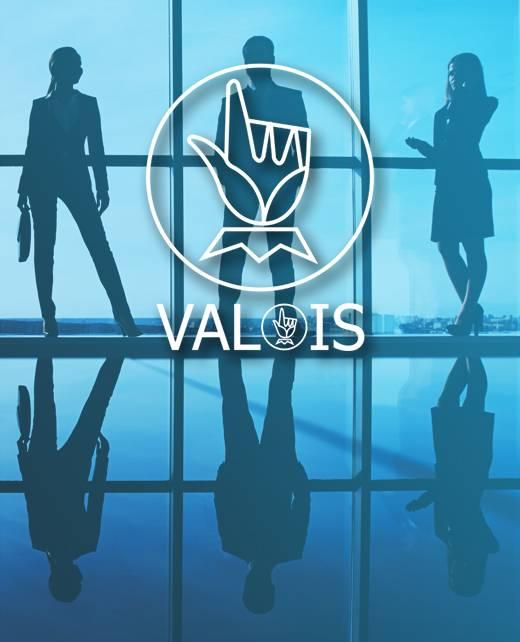 Groupe Valois - Notre société